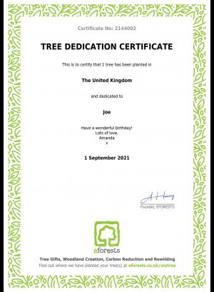Tree Dedication Gift