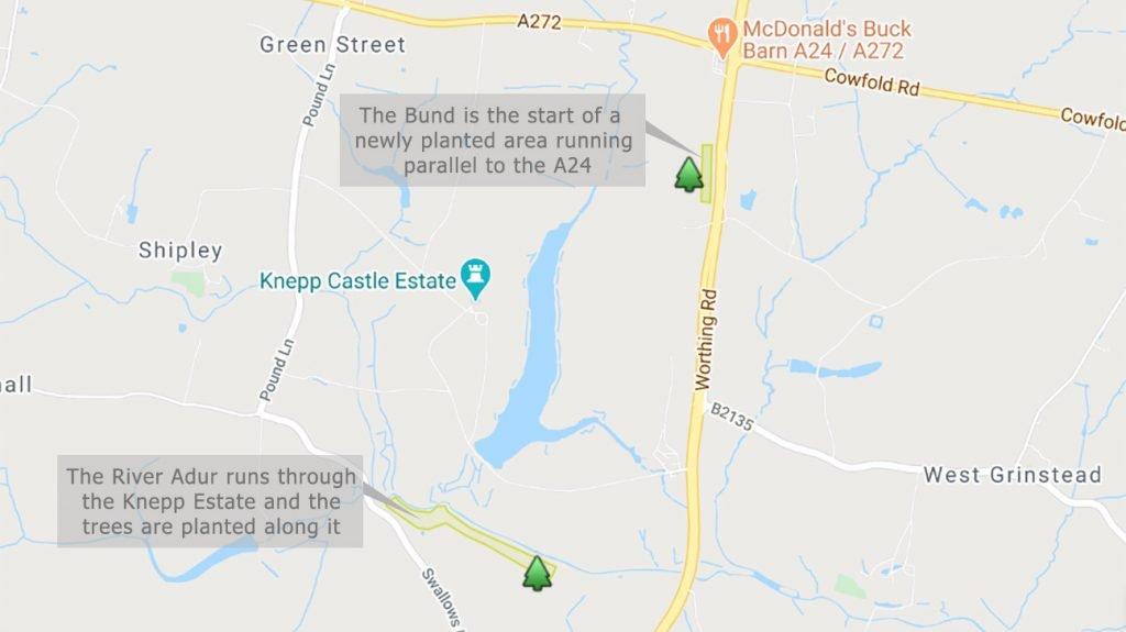 Knepp Wildland - tree planting areas map