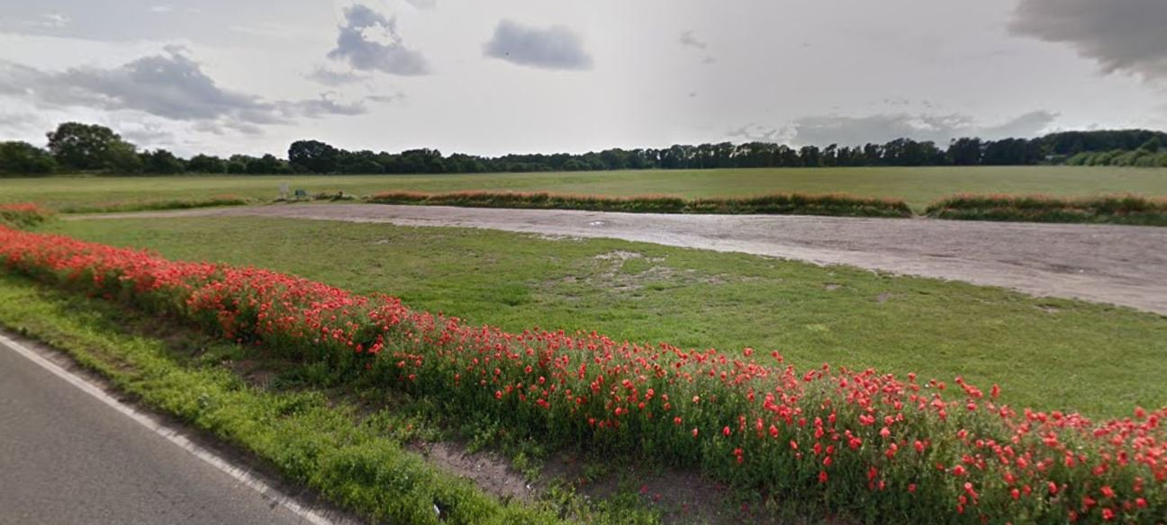 Barnham Cross Common Poppies