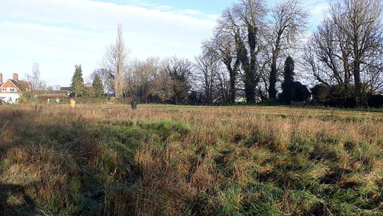 Brewers Green  -  Norfolk  -  Before Tree Planting