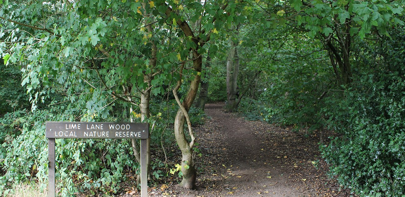 Chaddesden Wood  -  Derby  -  Entrance To Lime Lane Wood