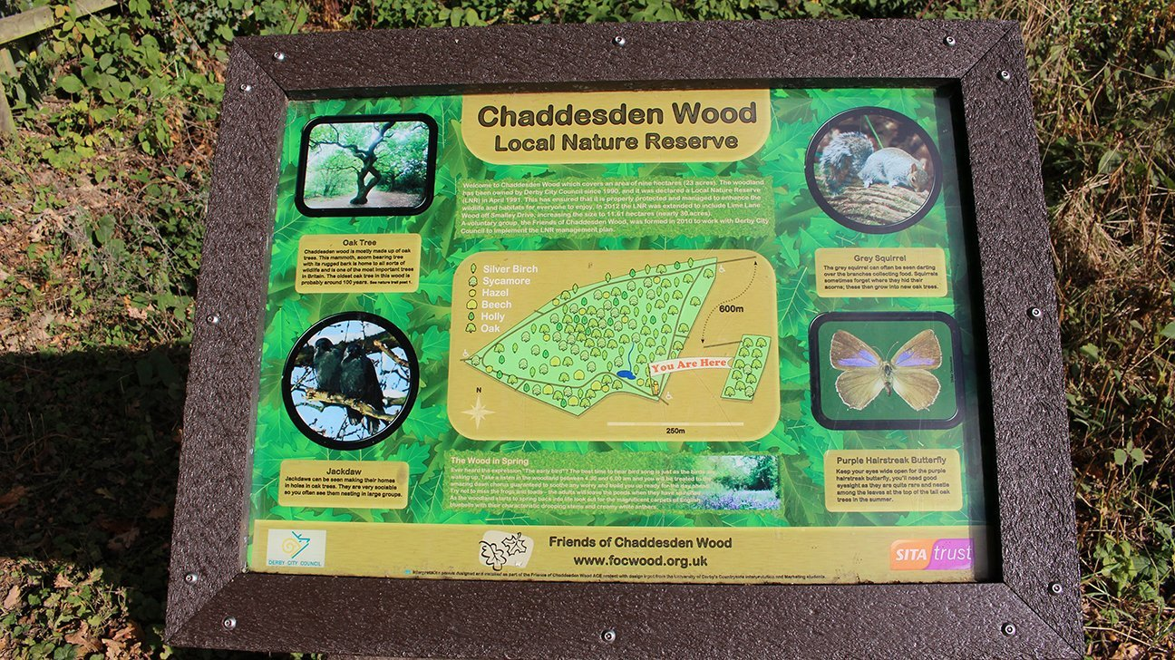 Chaddesden Wood  -  Derby  -  Information Board