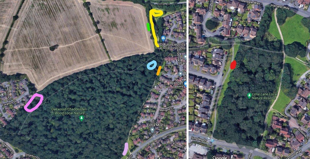 Chaddesden Wood  -  Derby  -  Planting Areas