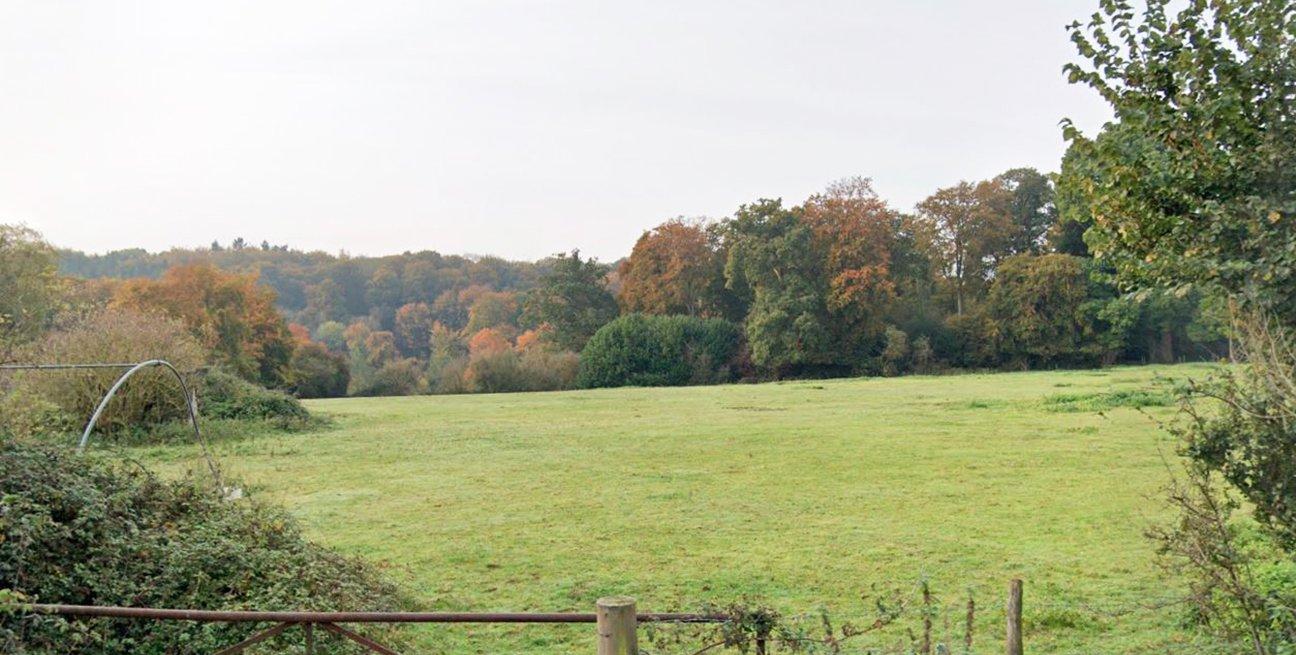 Greencombe Coppice  -  Berkshire  -  Before Tree Planting 2021