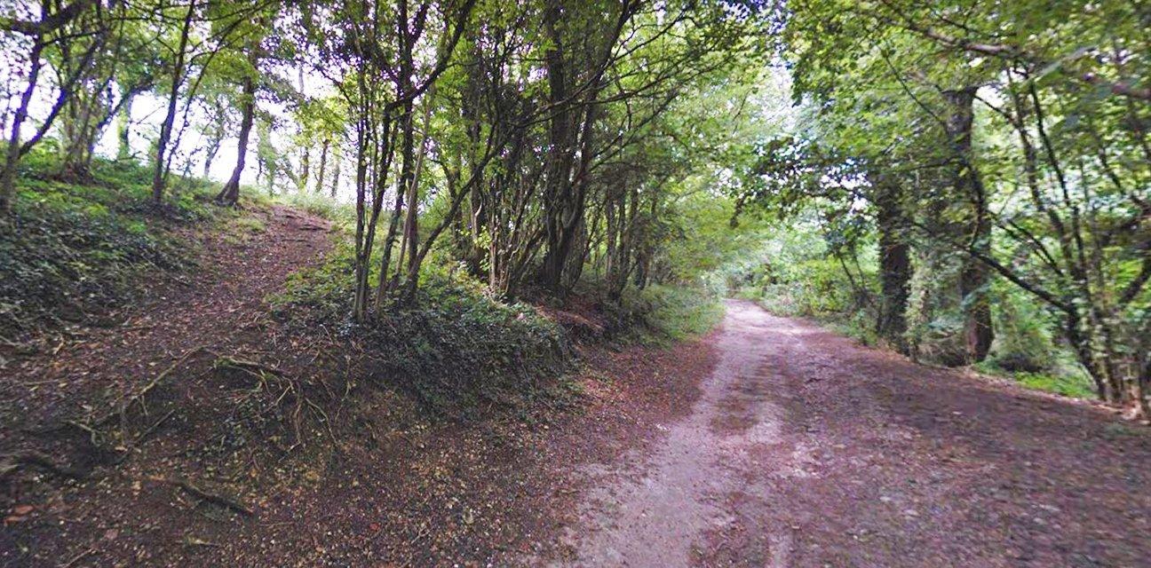 Jevington Holt  -  East Sussex  -  South Downs Way