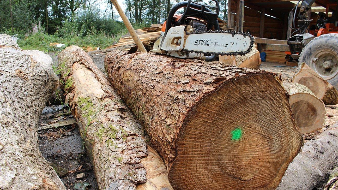 Long Wood Community Woodland  -  Wales  -  Chainsaw And Log At Long Wood Sawmill