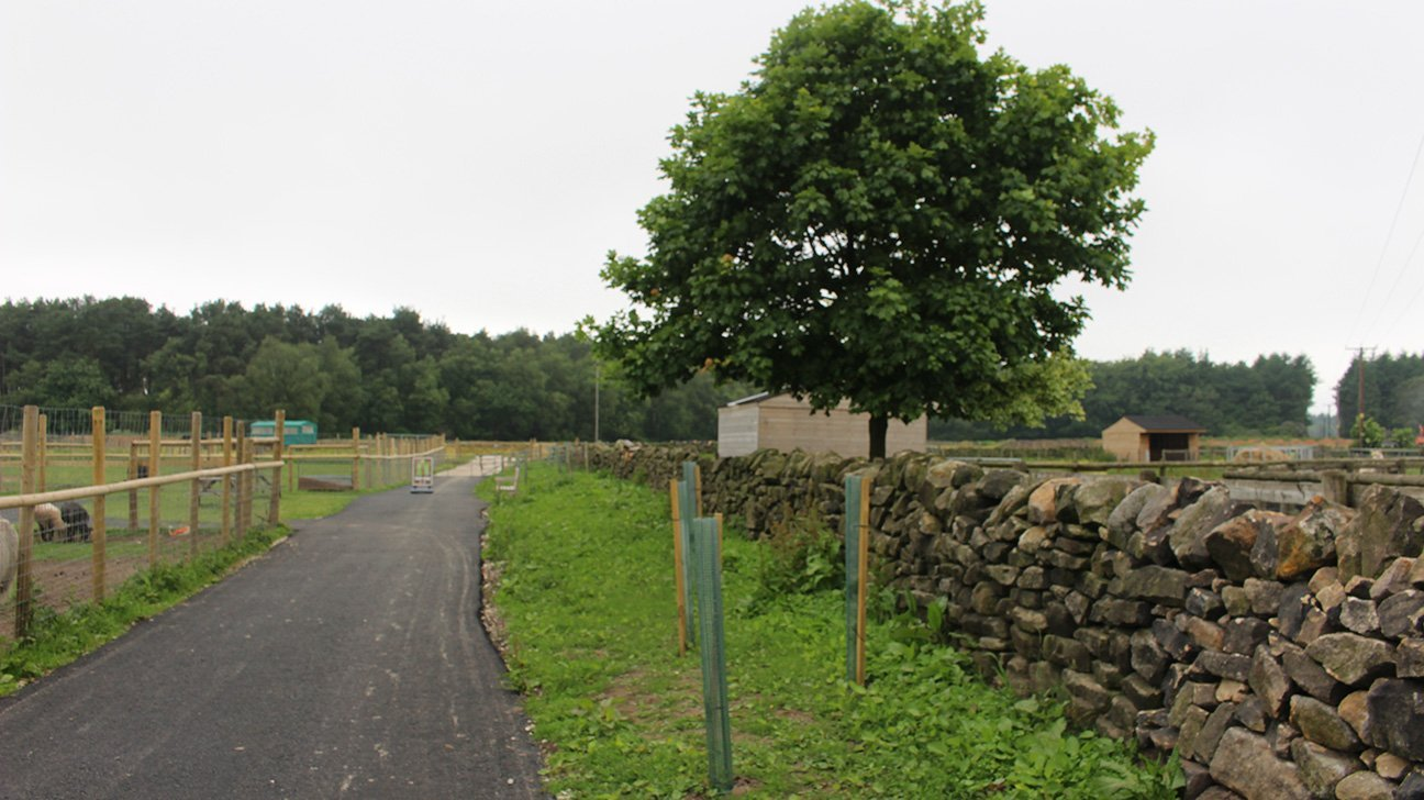 Matlock Farm Park  -  Derbyshire  -  Trees Are In Deer Shelters Along Pathways Throughout The Farm