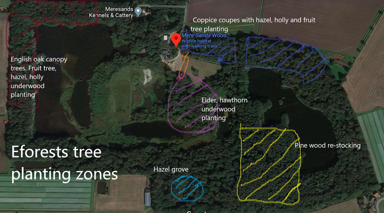 Mere Sands Wood  -  Lancashire  -  Tree Planting Map