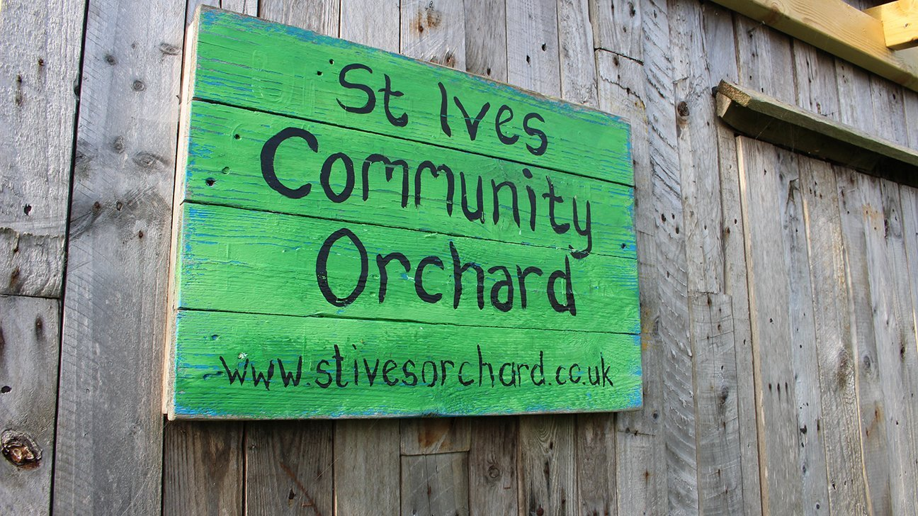 St Ives Community Orchard  -  Cornwall  -  Signpost