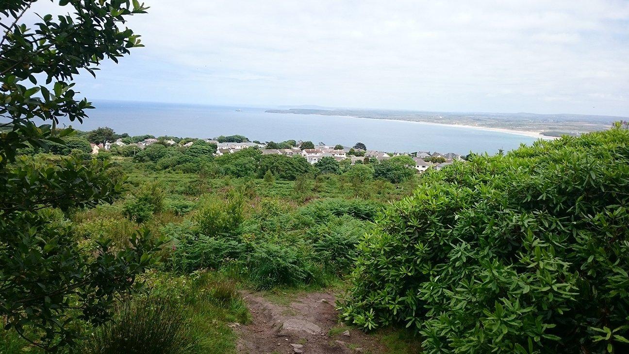 Steeple Woodland  -  Cornwall  -  Views Over Carbis Bay