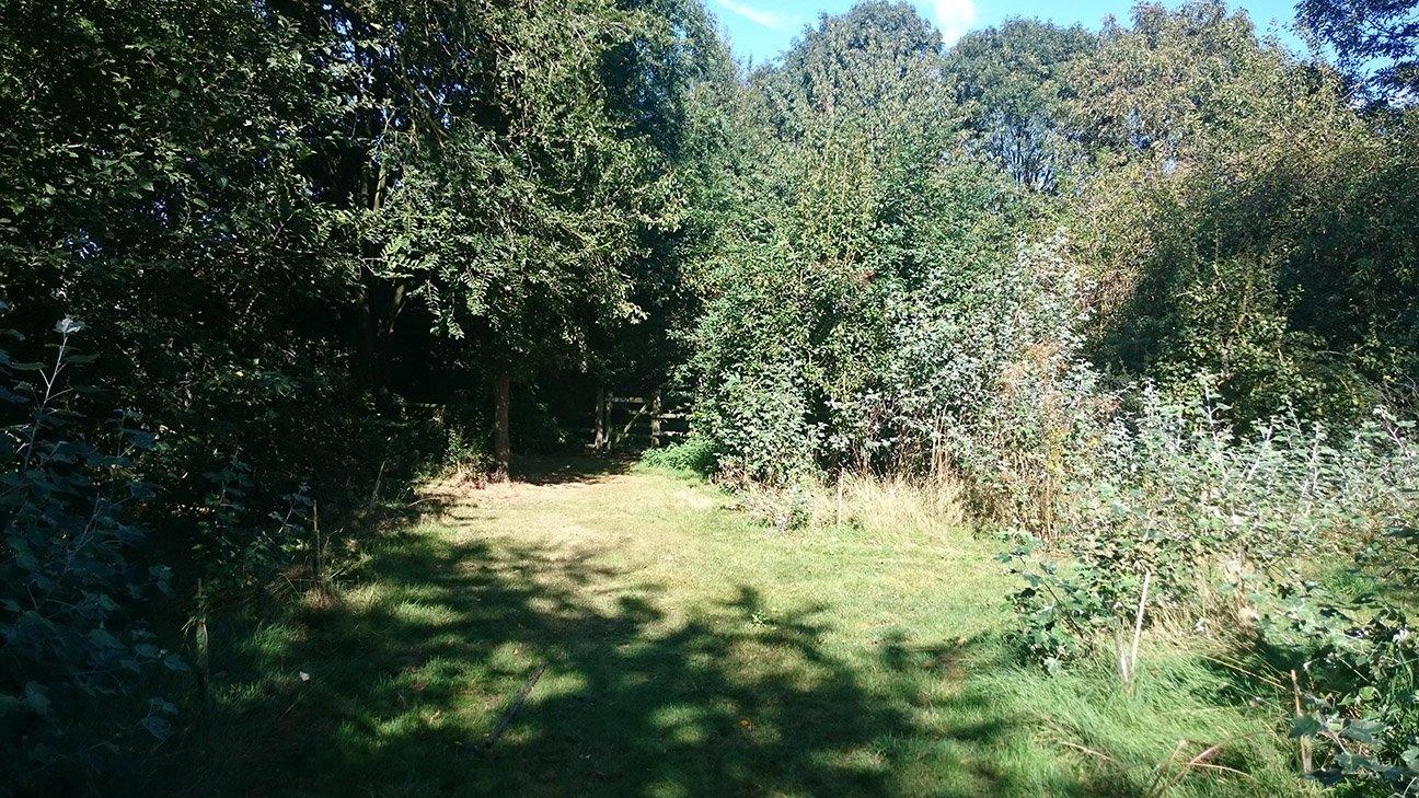 Thameside Nature Park  -  Essex  -  Woodland Grove Entrance