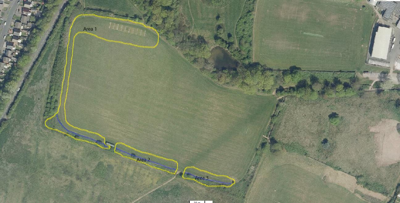 West Park Linear Woodland  -  Derbyshire  -  Planting Plan